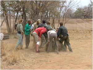 Wildlifemanagement10