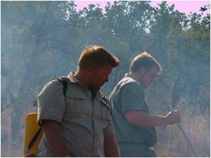 Wildlifemanagement12