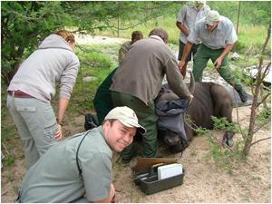 Wildlifemanagement2