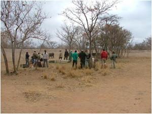 Wildlifemanagement8